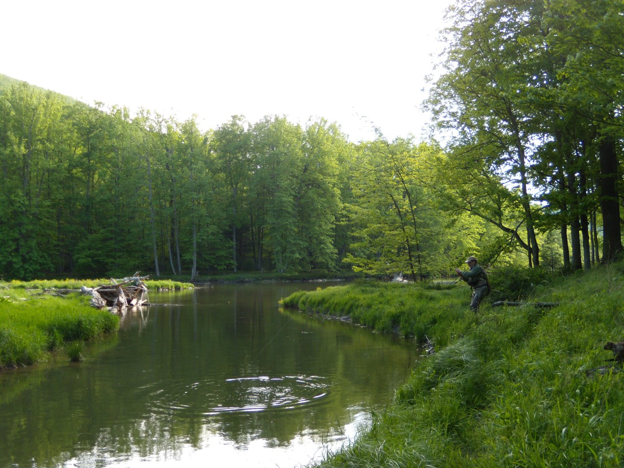 penns creek men Guided fly fishing tco offers fly fishing guide services in a full or half day format for trout, smallmouth bass, steelhead, northern pike, carp and anything else that swims you'll find our guides to be both knowledgeable and friendly with a focus on education.